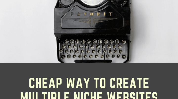 Cheap Way To Create Multiple Niche Websites | DigiNo