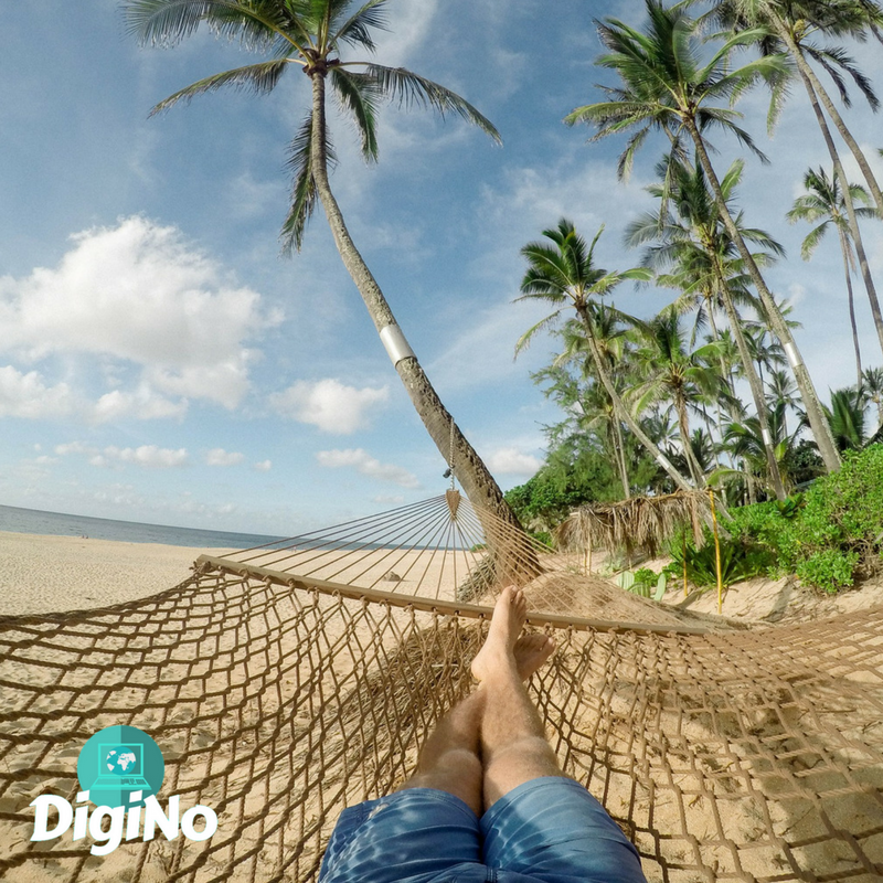 Become a Digital Nomad | DigiNo
