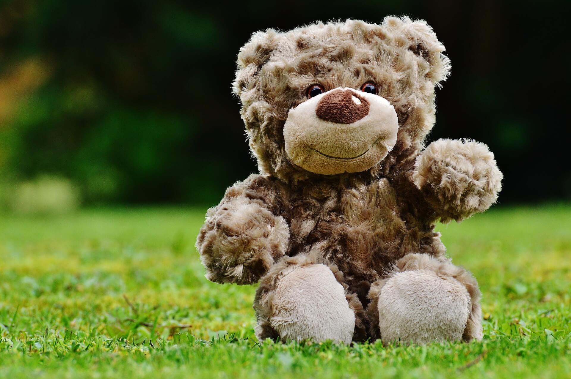 Lesson Plan For DaDaABC - Teddy Bear