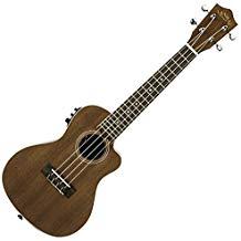 best ukuleles to buy